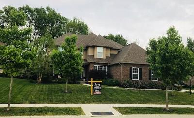 Noblesville Single Family Home For Sale: 17192 Bright Moon Drive