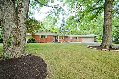 Zionsville Single Family Home For Sale: 660 Valley View Drive