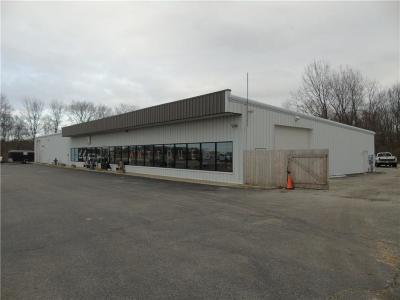 Noblesville Commercial For Sale: 24260 State Road 37 N