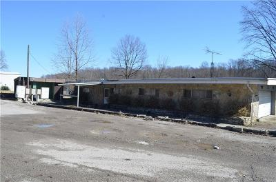 Decatur County Commercial For Sale: 999 South Lake McCoy Drive