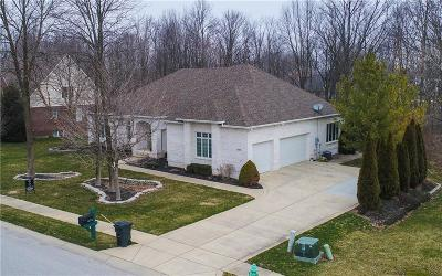 Hendricks County Single Family Home For Sale: 4678 East County Road 100 S