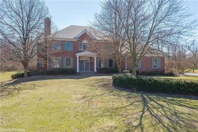 Indianapolis Single Family Home For Sale: 8931 William Penn Circle