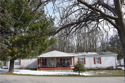 Poland Single Family Home For Sale: 10007 Ten High Drive
