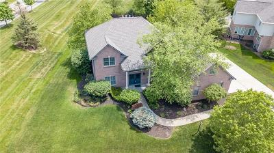 Zionsville Single Family Home For Sale: 4557 Woods Edge Drive