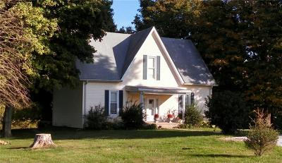 Fillmore Single Family Home For Sale: 351 South Main Street