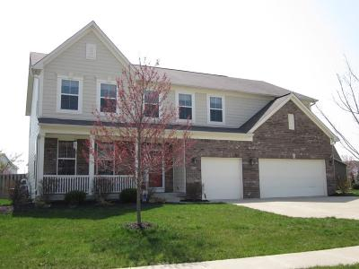Mc Cordsville, Mccordsville Single Family Home For Sale: 14371 Brook Meadow Drive