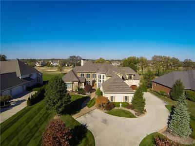 Noblesville Single Family Home For Sale: 11404 Hanbury Manor Boulevard