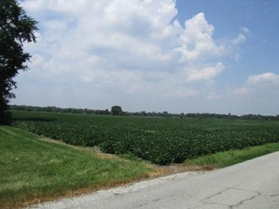 Noblesville Commercial Lots & Land For Sale: 14155 Cyntheanne Road