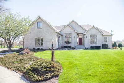 Cicero Single Family Home For Sale: 23385 North Millcreek Road