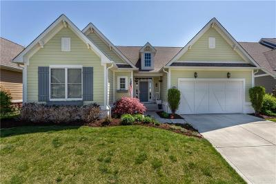 Westfield Single Family Home For Sale: 3454 Adare Circle