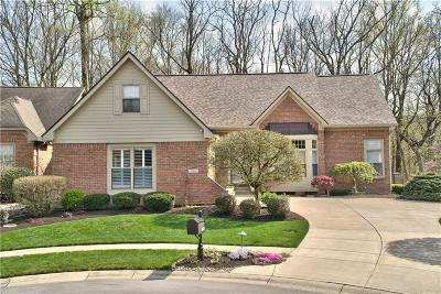 Indianapolis Single Family Home For Sale: 10381 Spring Highland Drive