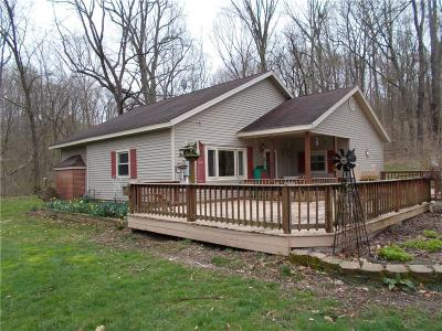 Parke County Single Family Home For Sale: 7761 North Bdale Road