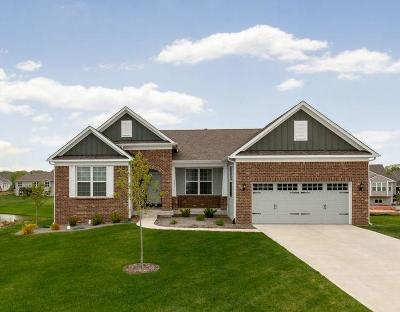 Fishers Single Family Home For Sale: 9653 Sunnyview Lane