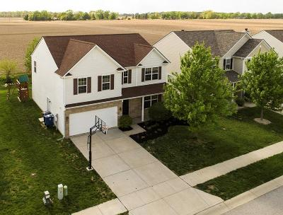 Whitestown Single Family Home For Sale: 3410 Firethorn Drive