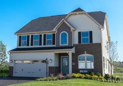 Westfield Single Family Home For Sale: 1233 Heartland Drive