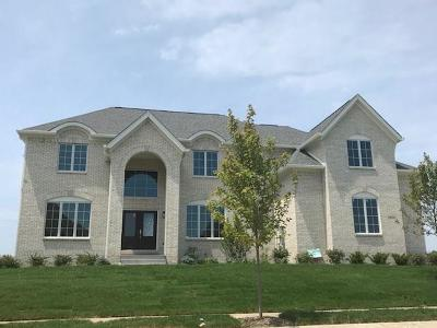Fishers Single Family Home For Sale: 10058 Backstretch Row