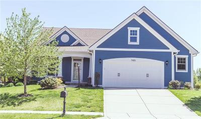 Avon Single Family Home For Sale: 7821 Village Green Drive