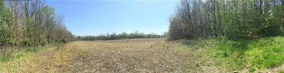 Residential Lots & Land For Sale: County Road 550 W