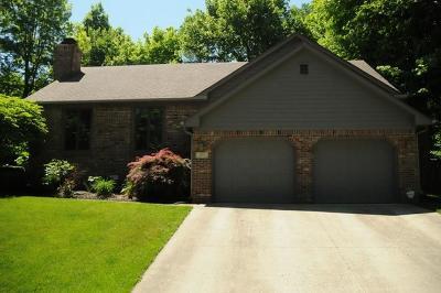 Henry County Single Family Home For Sale: 203 Tara Lane