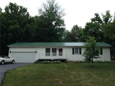 Parke County Single Family Home For Sale: 1391 South Jessie Court