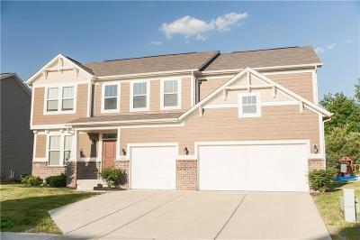 Mc Cordsville, Mccordsville Single Family Home For Sale: 9727 Clay Brook Drive