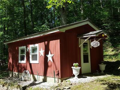 Parke County Single Family Home For Sale: 4907 South Martin Road
