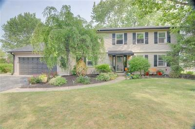 Noblesville Single Family Home For Sale: 1234 Willow Way