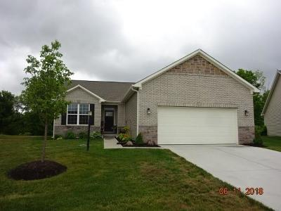 Plainfield Single Family Home For Sale: 1527 Blackthorne Trail S