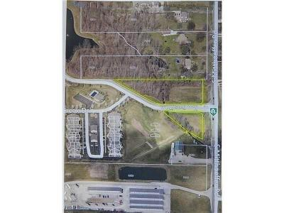 Indianapolis Commercial Lots & Land For Sale: 270 South Mitthoeffer Road