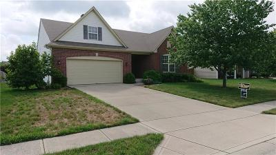 Single Family Home For Sale: 11293 Niagara Drive