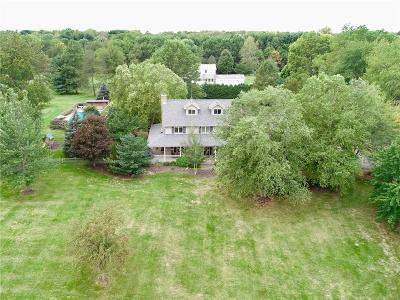 Cicero Single Family Home For Sale: 23650 Anthony Road
