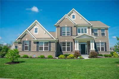 Plainfield, Plainflied Single Family Home For Sale: 5400 Pinto Lane