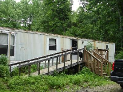 Owen County Single Family Home For Sale: 843 Mills Creek Road