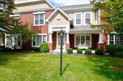 Boone County, Clinton County, Hamilton County, Hendricks County, Madison County Condo/Townhouse For Sale: 742 Charlotte Place