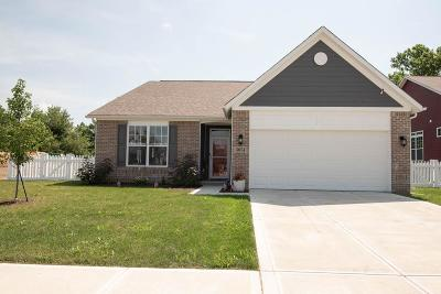 Indianapolis IN Single Family Home For Sale: $205,000