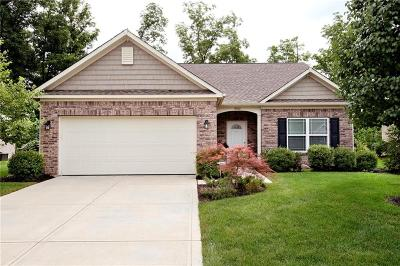 Mc Cordsville, Mccordsville Single Family Home For Sale: 9765 Brook Wood Drive