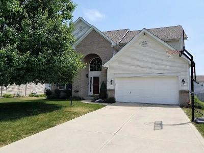 Brownsburg Single Family Home For Sale: 810 Wild Lake Circle