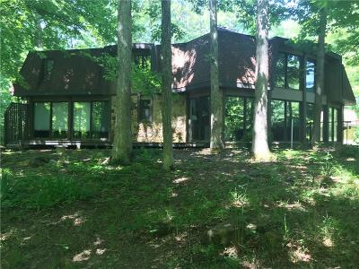 Hendricks County Single Family Home For Sale: 5154 East County Road 200 S