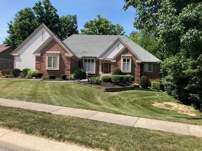Indianapolis Single Family Home For Sale: 8244 Twin Pointe Circle