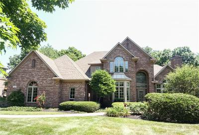 Zionsville Single Family Home For Sale: 7469 Fox Hollow Court
