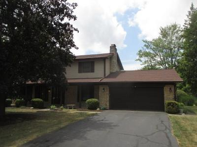 Indianapolis Single Family Home For Sale: 410 Bradock Court