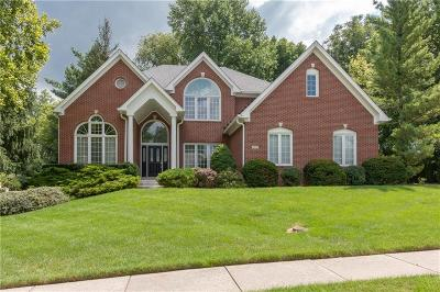 Indianapolis Single Family Home For Sale: 9213 Anchor Mark Drive