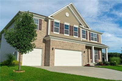 Columbus Single Family Home For Sale: 2971 Daylily Drive