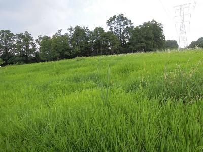 Camby Residential Lots & Land For Sale: 7969 East Triple Crown Lane