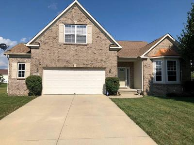 Indianapolis Single Family Home For Sale: 9337 Woodslake Drive