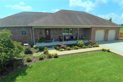 Delaware County Single Family Home For Sale: 9801 West County Road 900 N