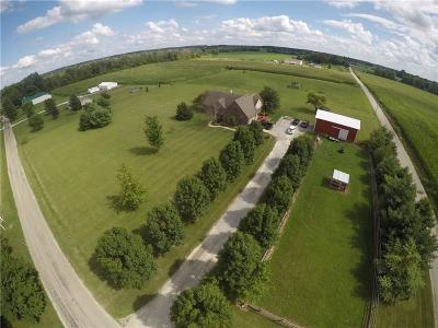Henry County Single Family Home For Sale: 9691 West County Road 400