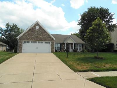 Single Family Home For Sale: 10229 Ironway Drive