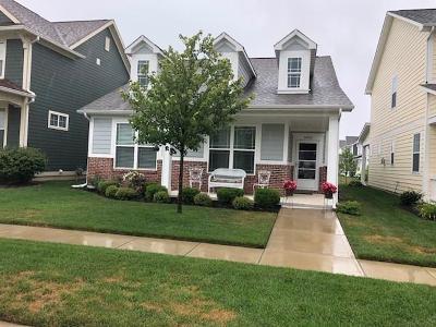 Whitestown Single Family Home For Sale: 5935 Aldridge Drive
