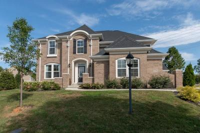 Fishers Single Family Home For Sale: 11578 Townsend Court